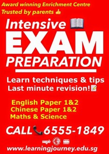 intensive exam preparation workshop singapore english chinese maths science