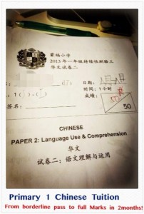 primary chinese tuition singapore 3