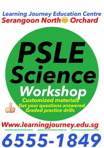 psle science tuition singapore workshop